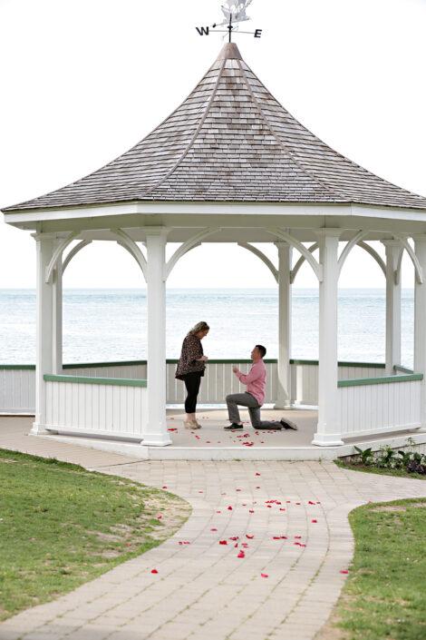 she said yes, proposal in niagara on the lake